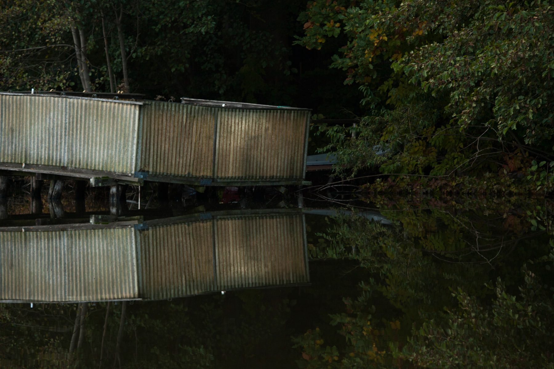 """lena loose"", lena maria loose fotografie photography stege lake see brandenburg"